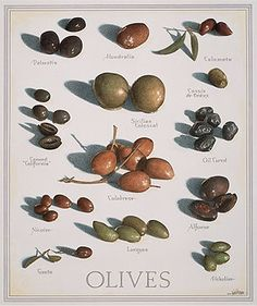 Olives, by John Burgoyne, for the back cover of Cook's Illustrated June 1999