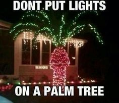 This fully made my day.  Showed it to the guy...now I am scared one day that I will come home to a livingroom full of lit palm trees