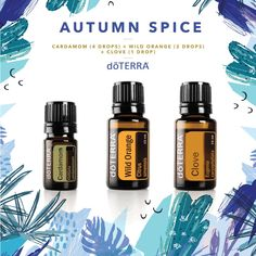 doTERRA Terrific Trio Cassia, Spearmint, and Wild Orange A great diffuser blend for restoring a feeling of energy and focus Cypress Essential Oil, Sandalwood Essential Oil, Citrus Essential Oil, Citrus Oil, Essential Oil Diffuser Blends, Essential Oil Uses, Doterra Blends, Doterra Essential Oils, Tips