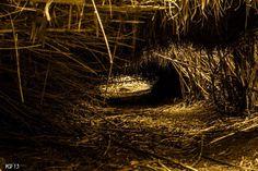 La cueva de los enanitos... by Veronica Photography on 500px