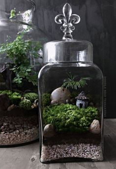Stunning Fairy Garden Miniatures Project Ideas 16 | Fairy Garden Party