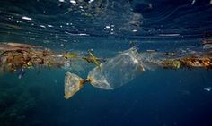 England's plastic bag usage drops 85% since 5p charge introduced. Good news for the environment