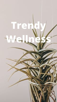 Trending Topics, You Must, Trauma, Lifestyle Blog, Wellness, How To Get, In This Moment, Reading, Books