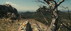 Beautiful shots from Palma de Mallorca, Spain x Glidetrack. #glidetrack #cinematography #spain www.glidetrack.com