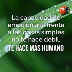 La capacidad de emocionarte frente a las cosas simples no te hace débil, te hace más humano.