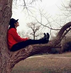 A beautiful pic I think it has to be his giving tree.