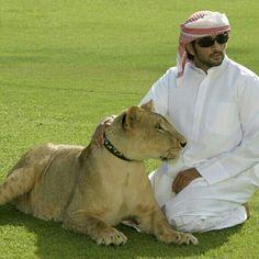 Sheikh Hamdan  prince of Dubai= arabic dreammm