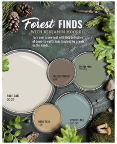 Green Paint Colors, Paint Color Schemes, Interior Paint Colors, Paint Colors For Home, Wall Colors, House Colors, Green Color Schemes, Interior Color Schemes, Bathroom Color Schemes