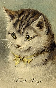 ArtzeeCCC: Vintage Victorian Cat Kitten Postcard