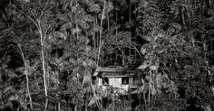 """Ilha de Marajó, no Pará. Para realizar o projeto """"Água"""", o fotógrafo e ambientalista Valdemir Cunha fotografou ao longo de cinco anos rios, lagos e represas pelo Brasil. O resultado do trabalho poderá ser visto nas imagens em exposição na Galeria Porão, em São Paulo, a partir de sábado, dia 7 de novembro"""