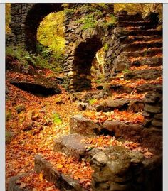 Georgeous! #fall #nature