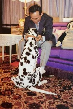 THE KING OF THAILAND AND HIS BELOVED DOG............ccp