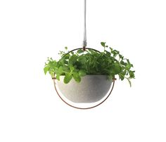 awesome hanging planter