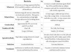 How can you tell the difference between a bacterial infection and a viral infection? Description from howtoprovide.com.
