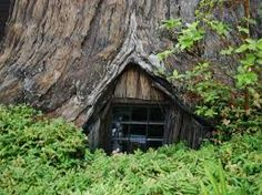 famous tree houses - Google Search