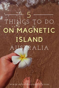 TOP 5 Things To Do   Magnetic Island QLD   Things to do   Magnetic Island Australia   Townsville   What to do on Magnetic Island   Snorkelling Great Barrier Reef   Great Barrier Reef   Scuba Diving Australia   Boating Australia   Where To Go In Australia   Travel Blogger   National Parks Australia   Outdoors in Australia   Things to do in Australia   Best Hiking Tracks   Best Hiking in Australia   Hiking In Australia   Australia National Parks