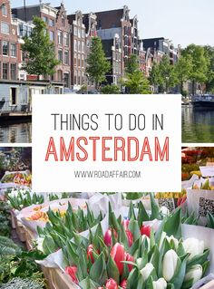 The Ultimate Travel Guide to the Best Things to Do in Amsterdam, Netherlands.