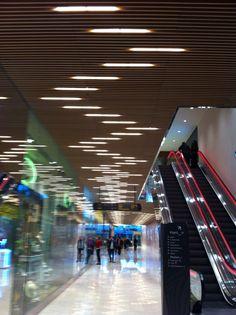 Cove Lighting, Linear Lighting, Interior Lighting, Lighting Design, Corporate Office Design, Modern Office Design, Timber Ceiling, Modern Ceiling, Boutique Interior