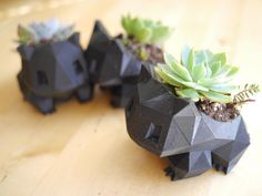 This happened, Yup. Bulbasaur 3D printed planters with little succulents. Vine whip! #3dprintingprojects #3dprintingideas