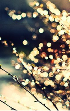 tree of bokeh Winter Christmas, Christmas Lights, Holiday Lights, Christmas Tree, Belle Photo, Pretty Pictures, Wonderful Time, Art Photography, Photography Tricks