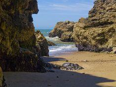 Title  Pt Reyes National Seashore   Artist  Bill Gallagher   Medium  Photograph - Photograph