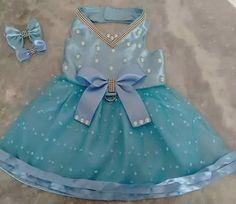 mcomo consigo o molde desse vestidinho oldes de vestidos pet gratis