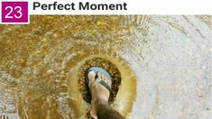Perfectly Timed Pics That Will Make You Look Twice -Part 23 Perfectly Timed Photos, You Look, Funny Pictures, In This Moment, Make It Yourself, How To Make, Fanny Pics, Funny Pics, Funny Images