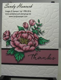 Birthday Blooms with the new Petal Burst Embossing Folder