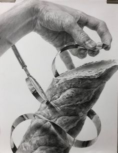 Pencil Drawings Of Nature, Realistic Pencil Drawings, Pictures To Draw, Nature Pictures, Drawing Sketches, Art Drawings, Still Life Drawing, Charcoal Art, Drawing Exercises