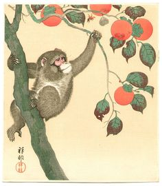 Ohara Koson: Monkey, Wasp and Persimmons - 1935