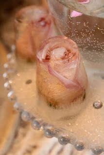Roses frozen in water