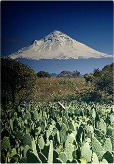 Popocatépetl By Comunidad Mexicana de fotógrafos de naturaleza. (Tomado de Facebook)