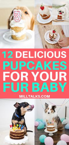 Does your dog have a birthday coming up? Or do you just like to spoil your pup for fun? Either way, here is a list of 12 cake recipes for your fur baby! 12 Delicious Cake Recipes for Dogs 12 Delicious Cake Recipes for Your Dog Dog Cake Recipes, Dog Biscuit Recipes, Dog Treat Recipes, Dog Food Recipes, Easy Dog Cake Recipe, Labrador Retriever, Golden Retriever, Homemade Dog Cookies, Homemade Dog Food