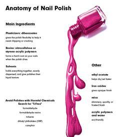 Anatomy of a Beauty Product: Nail Polish