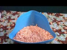 How To Potty Train Your Guinea Pig (Remade)