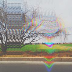 Nature. photo: Octavio Mora #Nature #Grunge #Glitché