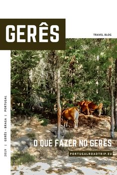 Gerês: 5 lugares (imperdíveis) a visitar no Gerês Visual Identity, Charts, Road Trip, Places To Visit, Traveling, Rest, Europe, Camping, Spaces