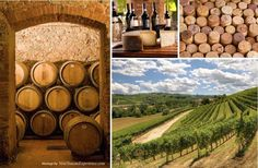 No trip to Tuscany would be complete without a wine cellar tour!