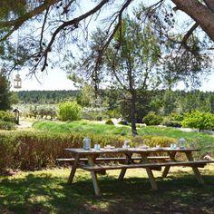 Green environment at Benalí Spain