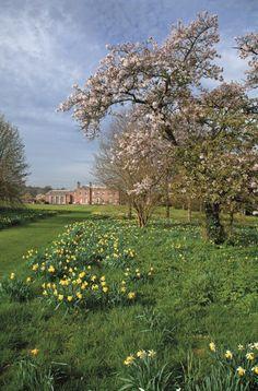 #GodmershamPark - Hier spazierte #Jane Austen und ließ sich zu ihren berühmten Romanen inspirieren. © Gerstenberg Verlag  #Gartenreportage #England  http://paulineshouse.com/miss-marple-england-garten-dichter/#more-4491