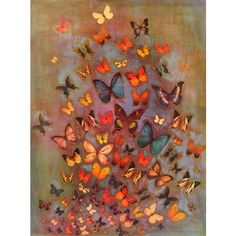 Odilon Redon 'Evocation of Butterflies 1912' Canvas Art ❤ liked on Polyvore featuring accessories