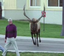 Giving grandpa a scare