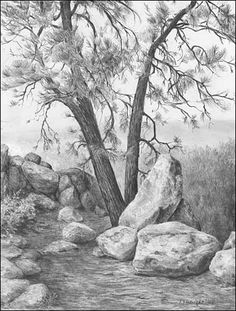 LANDSCAPES - Graphite Pencil Drawings by Diane Wright
