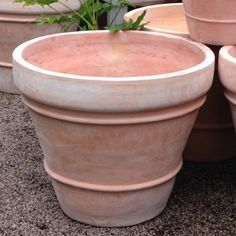 Big Terra Cotta Pots Large Terracotta Pots The