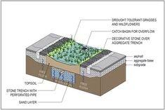 Cross section rain garden