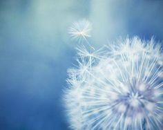 No tengo conflictos conmigo mismo/a. Me acepto con amor y compasión. (((Sesiones y Cursos Online www.ciaramolina.com #psicologia #emociones #salud)))
