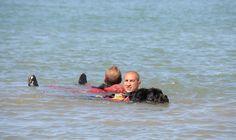 Texto y fotos: Antonio García López (Educador Canino y Adiestrador de perros potencialmente peligrosos) Este mes vamos a conocer una función que realizan los perros que pueden ayudar al rescate de cualquier persona en el agua: el socorrismo acuático canino. Para ello, nos desplazamos hasta la ciudad alicantina de Denia, una bonita ciudad con excelentes playas