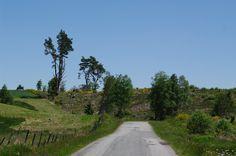 Le Plateau des Millevaches