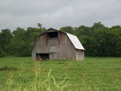 Robertson County, TN