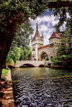 Amazing Snaps: The Castle in Budapast